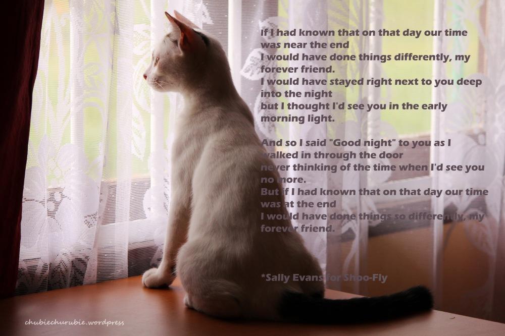 poem cacil